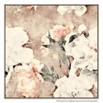 Paper and Rose - Print