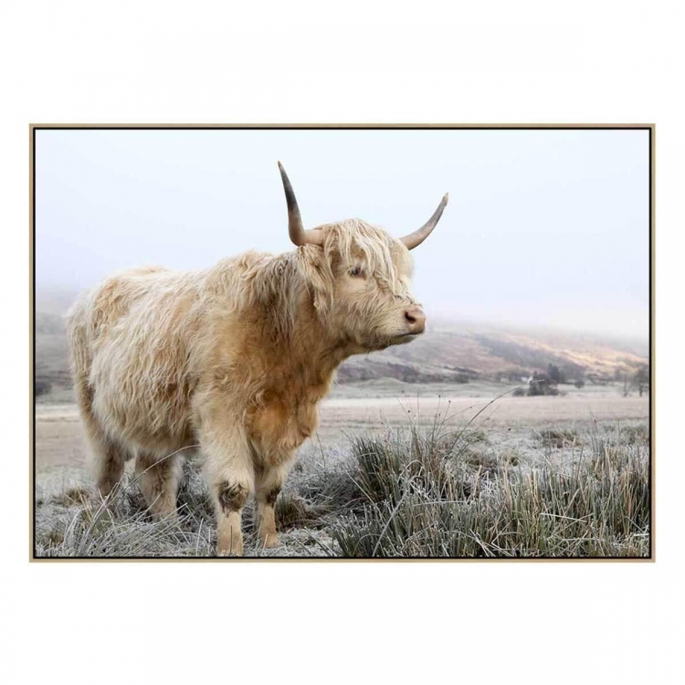 Highland 2 - Canvas Print - Natural Frame - ONE ONLY