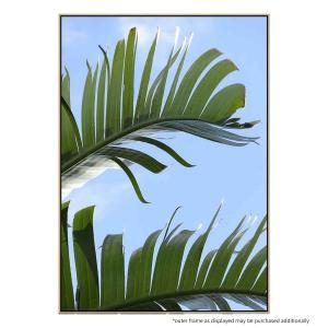Tropical Close Up - Print