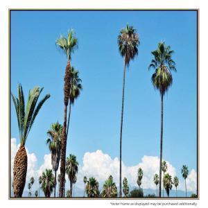 LA Palms - Print