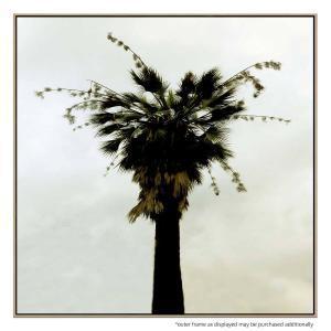 Mystic Palm - Print