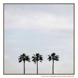 Palm Trio - Print