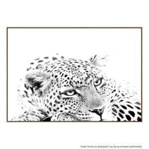 African Leopard - Print