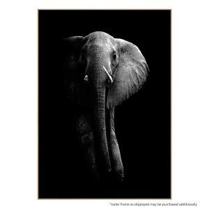 Mastodon - Print