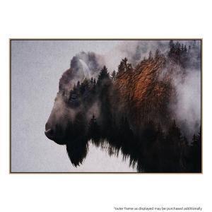 Bison - Print