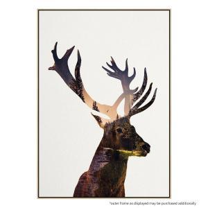 Deer In Forest - Print