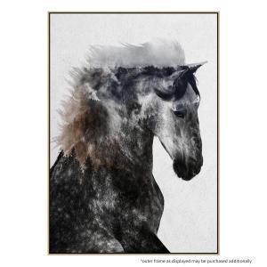 Proud Stallion - Print