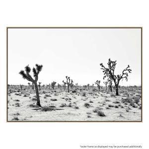 Palm Springs Story - Print
