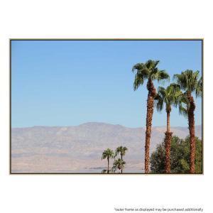 Desert Palm - Print