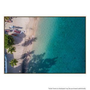 Tropicalis - Print