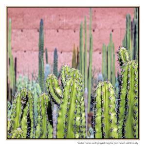 Santa Fe Greens - Print