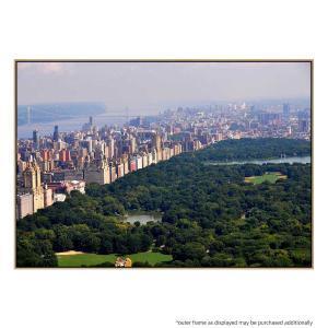 Central Park - Print