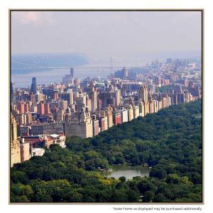 Central Park II - Print