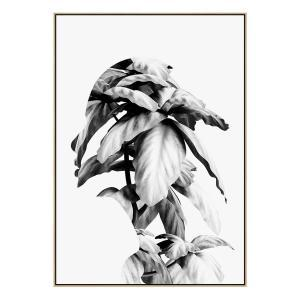 Mend - Canvas Print - Natural Frame - ONE ONLY