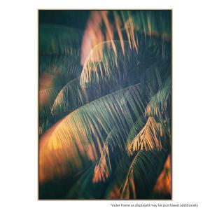 Light Of The Tropics - Print