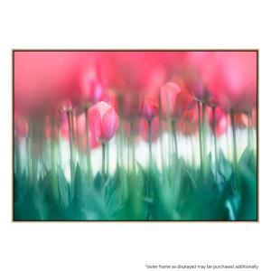 Lined Tulips - Print