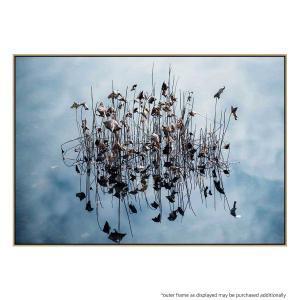 Reflection - Print