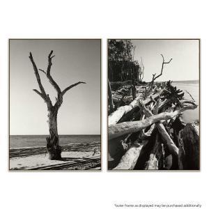 Moreton | Moreton 12 - Print