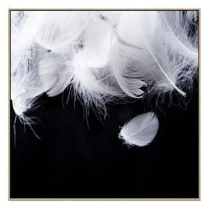 Feather Strong - Canvas Print - Natural Frame - ONE ONLY