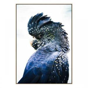 Cockatoo Blue - Canvas Print - Natural Frame - ONE ONLY