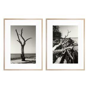 Moreton - Moreton 12 - Framed Prints - Natural - ONE ONLY