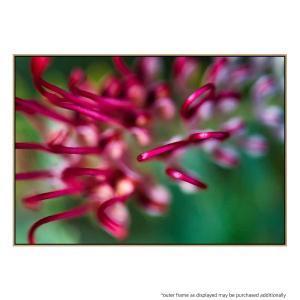 Raspberry Bliss - Print