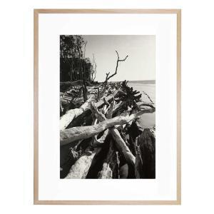 Moreton 12 - Framed Print - Natural Frame - ONE ONLY