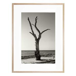 Moreton - Framed Print - Natural Frame - ONE ONLY