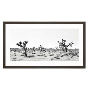 Palm Spring Story - Framed Print - Black Frame - ONE ONLY