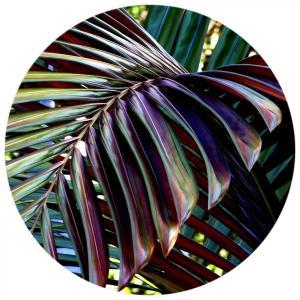 Purple Palm Leaf - Acrylic Art - ONE ONLY