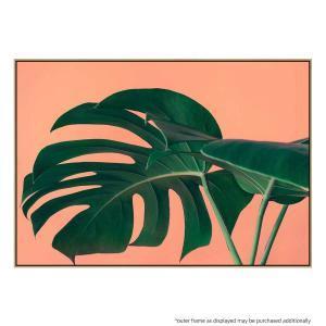 Montego Bloom - Print
