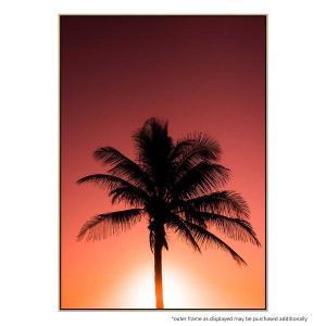Palmtree Sunset - Print