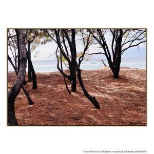 Through The Trees - Print