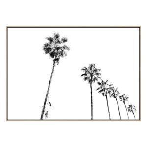 Palm Promenade - Canvas Print - Natural Shadow Frame (Clearance)