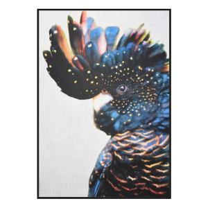 Cockatoo Side - Canvas Print - Black Shadow Frame (Clearance)