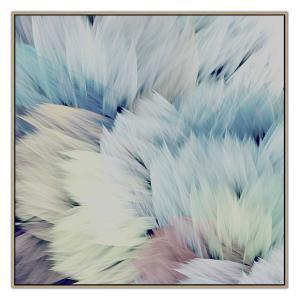 Flori Star - Canvas Print - Natural Shadow Frame - (Clearance)