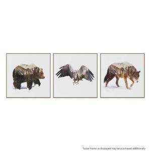 Arctic Grizzly | Arctic Eagle | Arctic Wolf