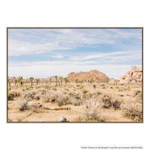 Desert Landscape - Print