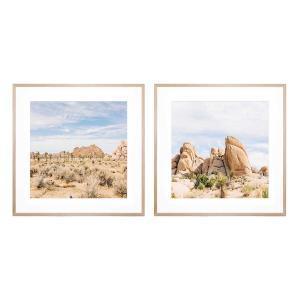 Desert Landscape | Desert Rock