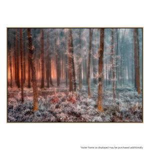 Frost Before Sunrise- Print