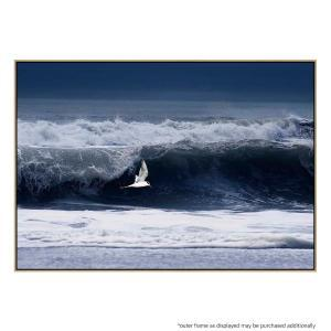 Flying Over Waves - Print