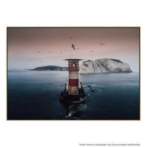 Lighthouse Birds - Print