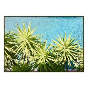 Pool Palms in Noosa - Print - Natural Floating Frame
