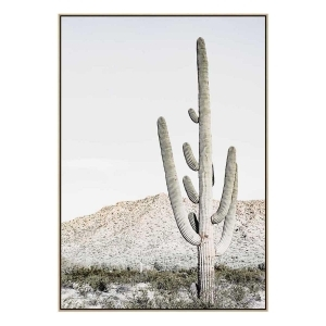Grey Cactus - Print - Natural  Floating Frame (FLASH SALE)
