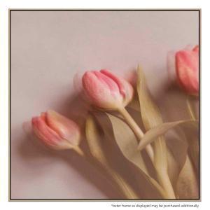 Tulipano Rosa - Print