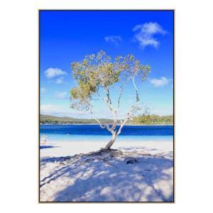 Lake Mckenzie - Print - Natural Floating Frame