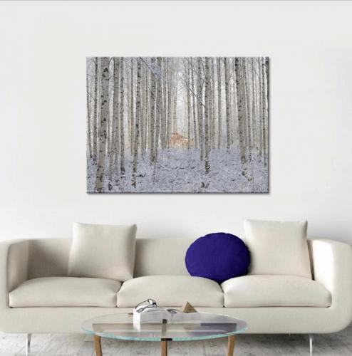 Photography winter James Treble collaboration