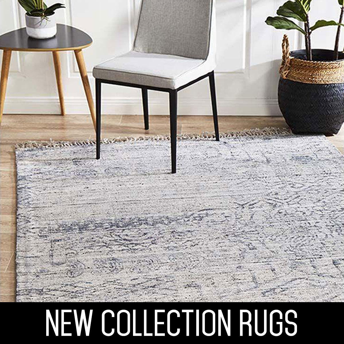 New Collection Rugs
